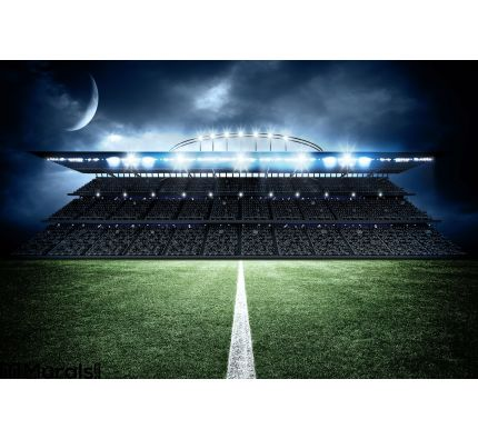 Stadium Wall Mural Wall art Wall decor