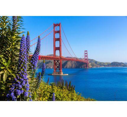 Golden Gate Bridge San Francisco Purple Flowers California Wall Mural Wall Tapestry tapestries