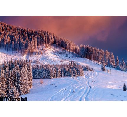 Winter Scene Colorful Sunset Over Snow Covered Trees Idyllic Mountain Landscape Wall Mural Wall Tapestry tapestries
