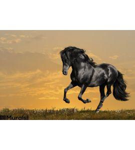 Black Horse Runs Gallop Wall Mural Wall Tapestry tapestries