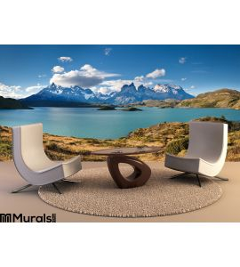 Torres Del Paine National Park Lake Pehoe Wall Mural Wall Tapestry tapestries