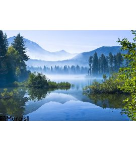 Morning Mountain Mist Wall Mural Wall Tapestry tapestries