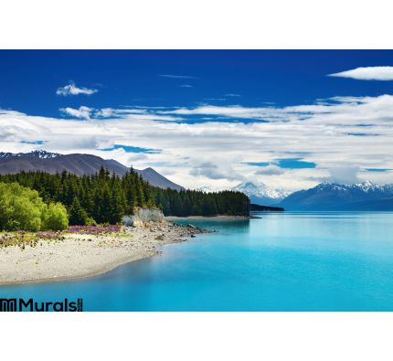 Pukaki Lake New Zealand Wall Mural Wall art Wall decor