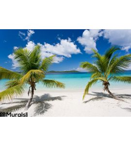 Palm Tree Tropical Island Beach Wall Mural