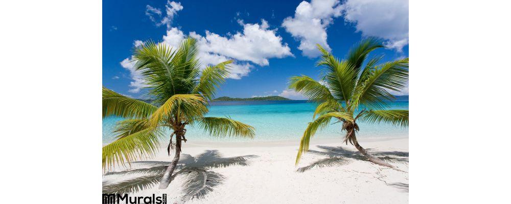 Palm Tree Tropical Island Beach Wall Mural