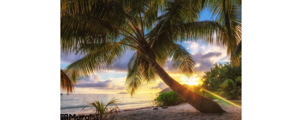 Palm Beach Sunrise Praslin Island Seychelles Wall Mural