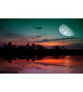 Ocean Sunset Moon Wall Mural Wall art Wall decor