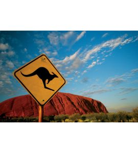 Kangaroo Ayers Rock Wall Mural Wall art Wall decor