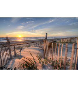 Outer Banks Beach Sunrise Sand Dunes Wall Mural Wall art Wall decor
