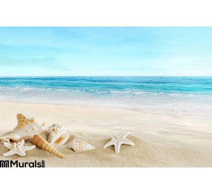 Landscape Shells Tropical Beach Wall Mural Wall art Wall decor