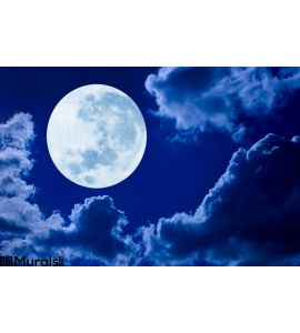 Full Moon Night Sky Wall Mural Wall art Wall decor