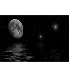 Starlit Night Wall Mural Wall art Wall decor