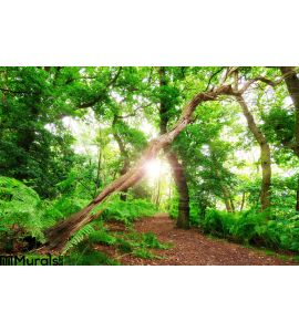 Fantasy Summer Forest Wall Mural Wall Tapestry tapestries