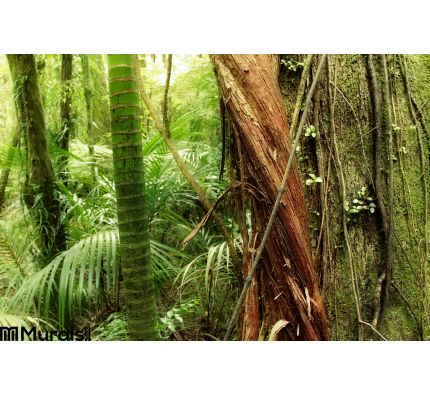 Jungle Wall Mural Wall Tapestry tapestries