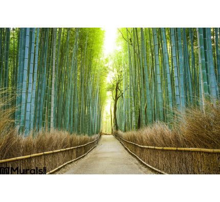 Kyoto, Japan Bamboo Forest Wall Mural Wall Tapestry tapestries