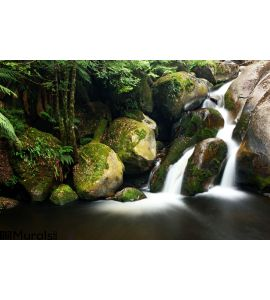 Rainforest Waterfall Wall Mural Wall Tapestry tapestries
