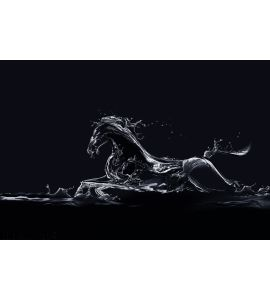 Black Water Horse Wall Mural