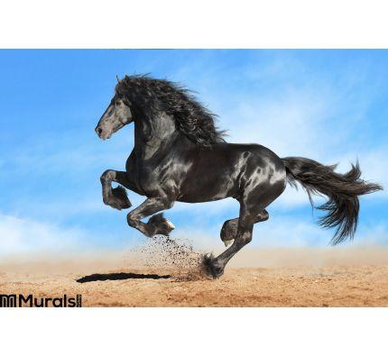 Black Friesian Horse Runs Gallop Wall Mural Wall art Wall decor