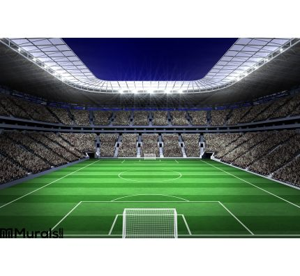 Large football stadium with lights Wall Mural Wall art Wall decor