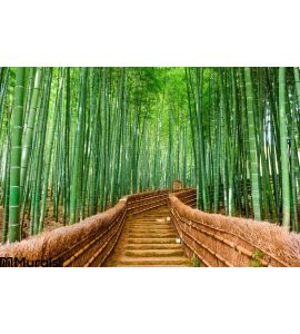 Kyoto Japan Bamboo Forest Wall Mural Wall art Wall decor