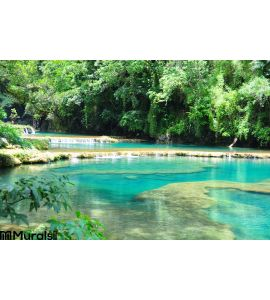 Semuc Champey Guatemala Wall Mural Wall Tapestry tapestries