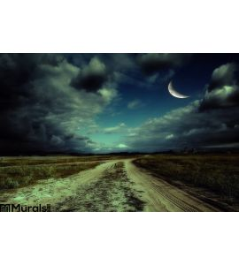 Road Night Wall Mural Wall Tapestry tapestries