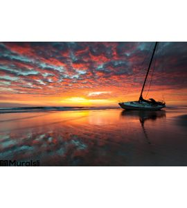 North Carolina Outer Banks Obx Shipwreck Sunrise S Wall Mural Wall Tapestry tapestries