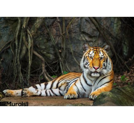 Tiger Wall Mural Wall Tapestry tapestries