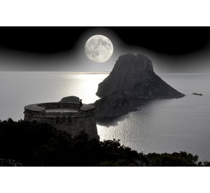 Lonely Tourist Looking Full Moon Sea Wall Mural Wall Tapestry tapestries
