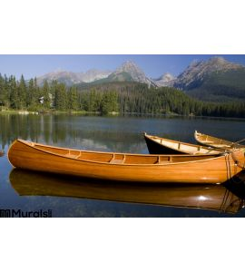 Mountain Lake Wall Mural Wall Tapestry tapestries