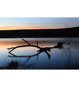 Sunset Lake Wall Mural Wall Tapestry tapestries