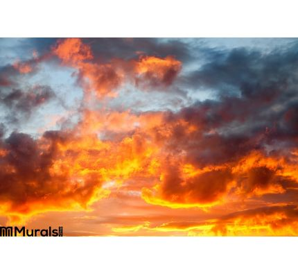 Fire Sky Wall Mural Wall Tapestry tapestries