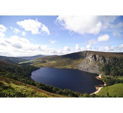 Lake Guinness Ireland Wall Mural Wall Tapestry tapestries