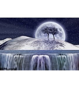 Fantastic Winter Moonlight Wall Mural