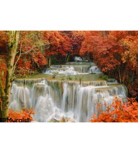 Waterfall Deep Rain Forest Jungle Huay Mae Kamin Waterfall Wall Mural