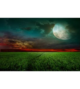 Rural Night Moon Wall Mural
