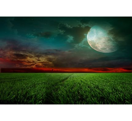 Rural Night Moon Wall Mural Wall Tapestry tapestries