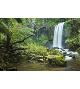 Rainforest Waterfalls Hopetoun Falls Victoria Australia Wall Mural Wall Tapestry tapestries