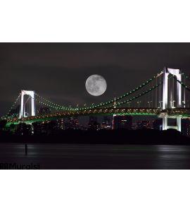 Full Moon over Tokyo, Japan Wall Mural