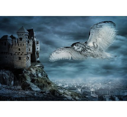 Flying Owl Bird Wall Mural Wall Tapestry tapestries