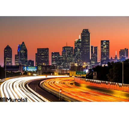 Dallas Skyline Sunrise Wall Mural Wall Tapestry tapestries