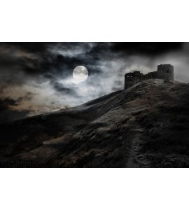 Night Moon Dark Fortress Wall Mural