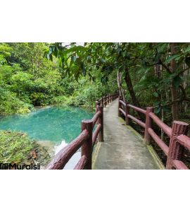 Pathway Located Deep Forest Over Natural Blue Lagoon Wall Mural