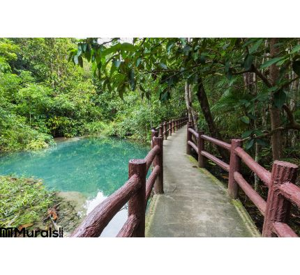 Pathway Located Deep Forest Over Natural Blue Lagoon Wall Mural Wall Tapestry tapestries