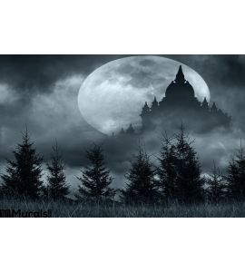 Magic Castle Silhouette Over Full Moon Mysterious Night Wall Mural