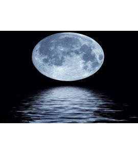 Full Moon Over Water Wall Mural