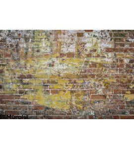 Graffiti Brick Wall Wall Mural