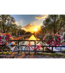 Amsterdam Summer Sunrise Wall Mural