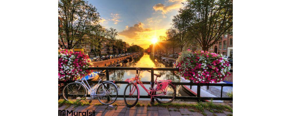 Amsterdam Summer Sunrise Wall Mural