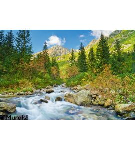 Mountain Brook Landscape Carpathian Mountains Trees Stream Wall Mural